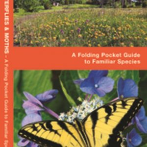 Pocket Naturalist: Great Lakes Butterflies & Moths