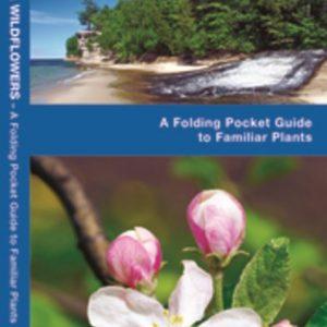 Pocket Naturalist: Michigan Trees & Wildflowers